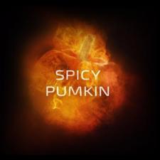 Do You Spicy Pumpkin, 50г, чайная смесь и